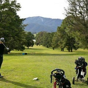 GolfClub215