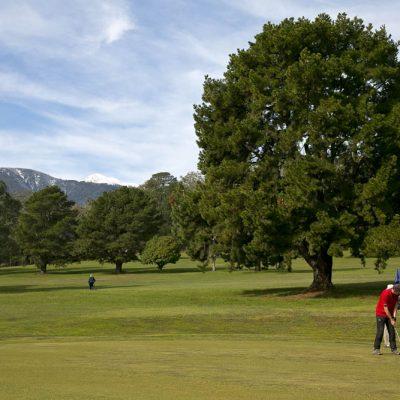 GolfClub230