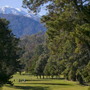 GolfClub58