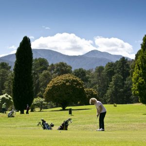 GolfClub59